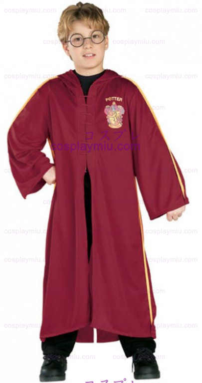 Harry Potter Quidditch Costume