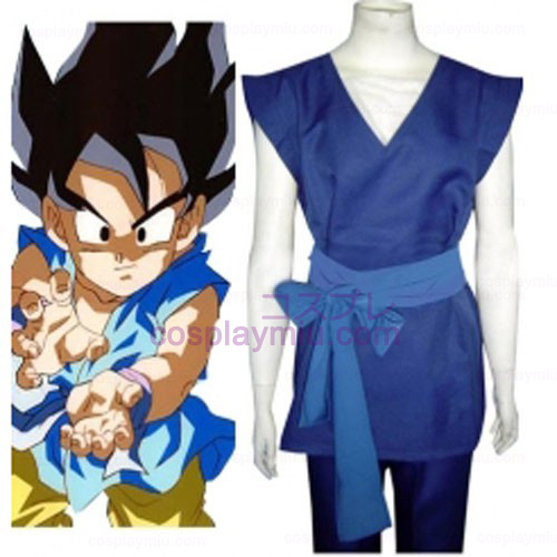 Dragon Ball Son Gohan Cosplay Costume